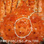 081225タラバガニの食べ方