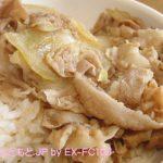 090405吉野家の豚丼