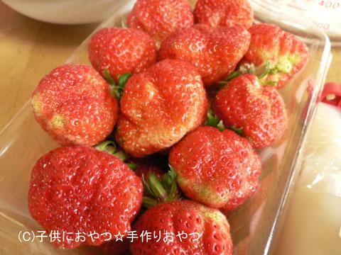 070206ichigo2.jpg