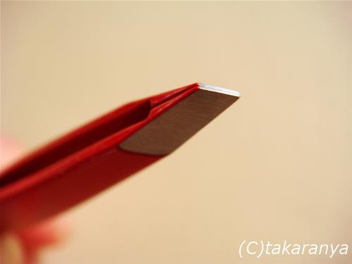 080501kenuki5.jpg
