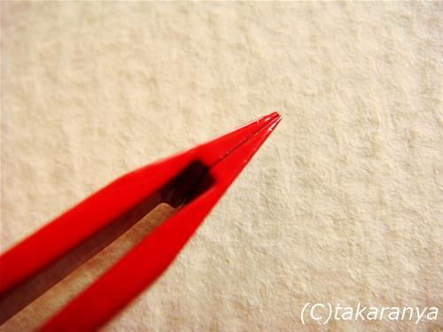 080501kenuki6.jpg
