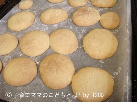 081125cookie.jpg