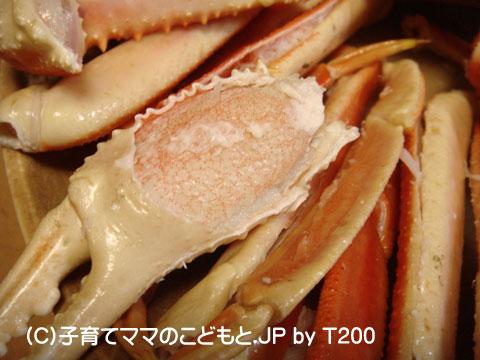 081224zuwai11.jpg