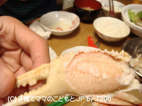 081224zuwai16.jpg