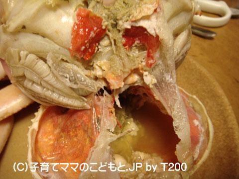 081224zuwai5.jpg