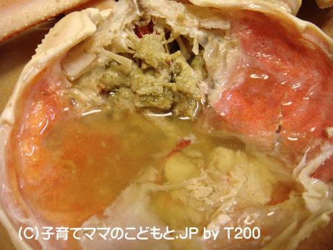 081224zuwai6.jpg