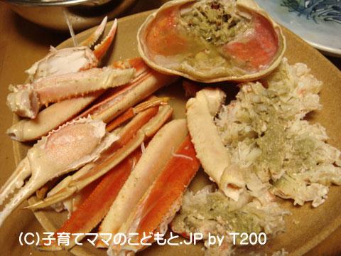 081224zuwai8.jpg