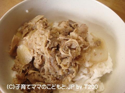 081229yoshinoya8.jpg