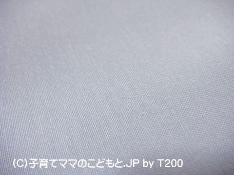 090121danizero4.jpg