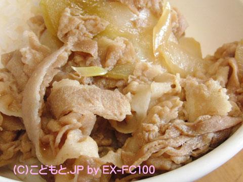 090405yoshinoya5.jpg