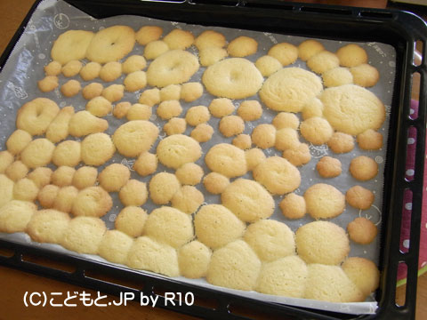 090513cookie3.jpg