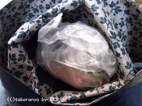 100206origamibag10.jpg