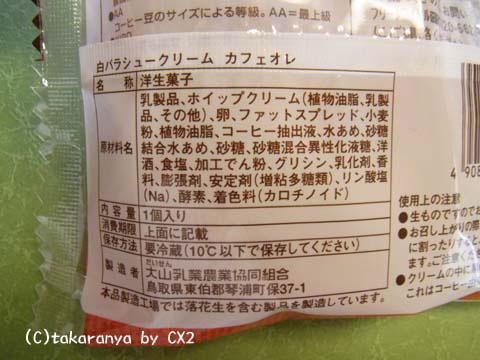100322daisen4.jpg