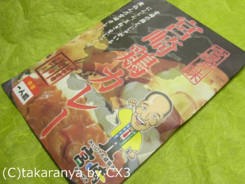 101204miyazaki1.jpg