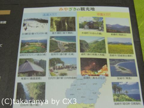 101204miyazaki10.jpg