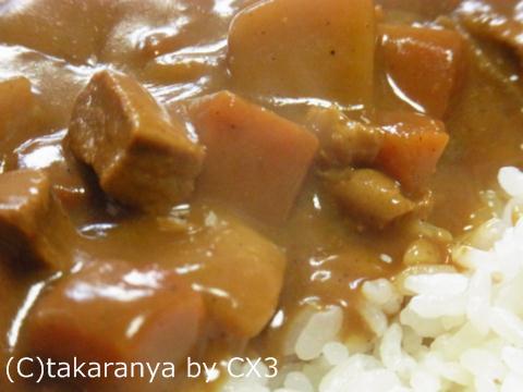 101204miyazaki5.jpg