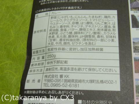 101204miyazaki6.jpg