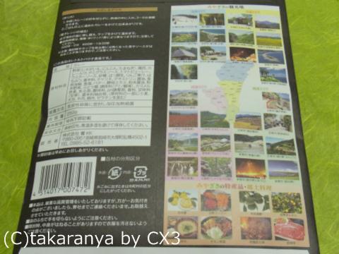 101204miyazaki7.jpg