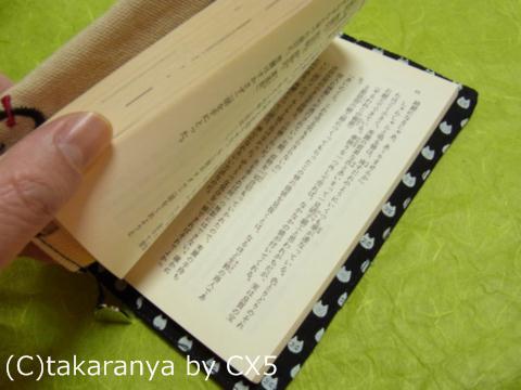 110505bookcover11.jpg