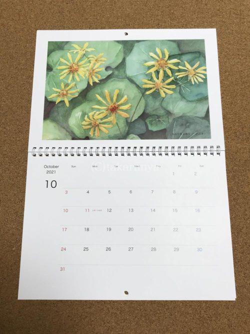 あかり花鳥風月カレンダー「黄色い風車|つわぶき」