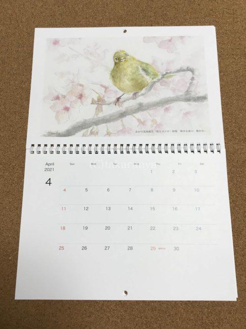 あかり花鳥風月カレンダー「メジロと桜」
