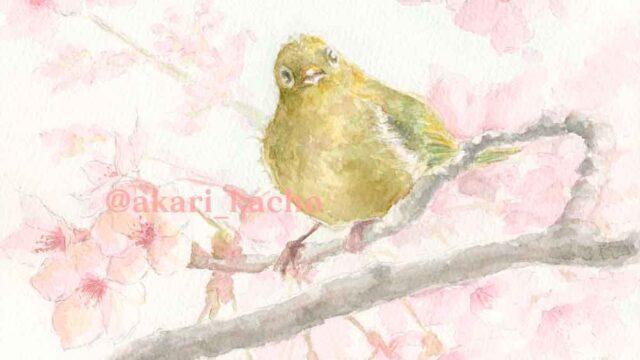 あかり花鳥風月画「桜とメジロ:初桜萌ゆる命の翼かな」